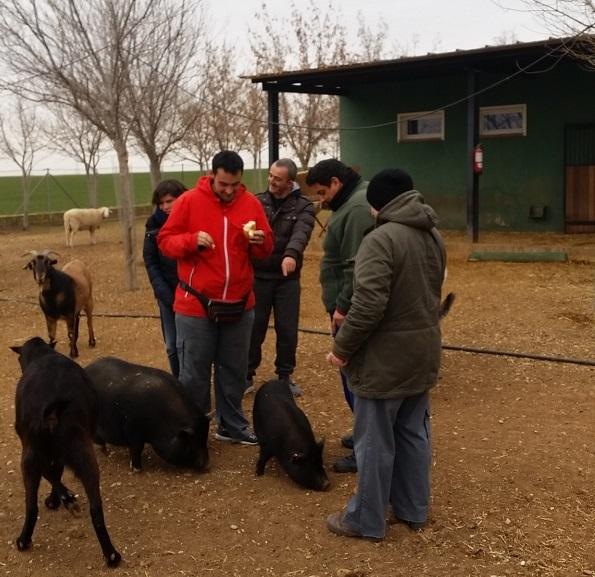 Voluntarios de Grupo AMÁS en el refugio de la Asociación Alba. Foto: Grupo AMÁS.