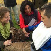 Usuario de Grupo AMÁS durante la demostración de la terapia con aves rapaces. Foto: Grupo AMÁS.