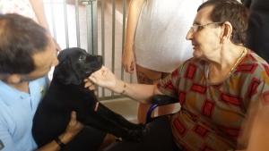 El contacto con los animales estimula las capacidades de las personas