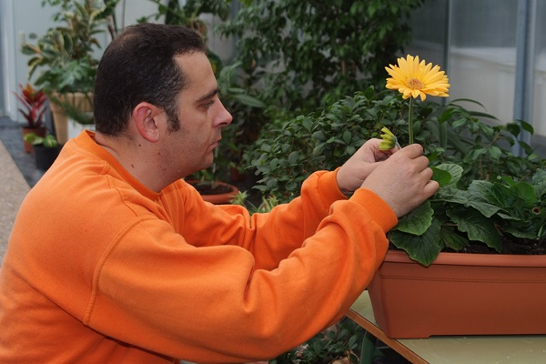 Trabajador de jardinería de la Fundación AMÁS Empleo. Foto: Grupo AMÁS.