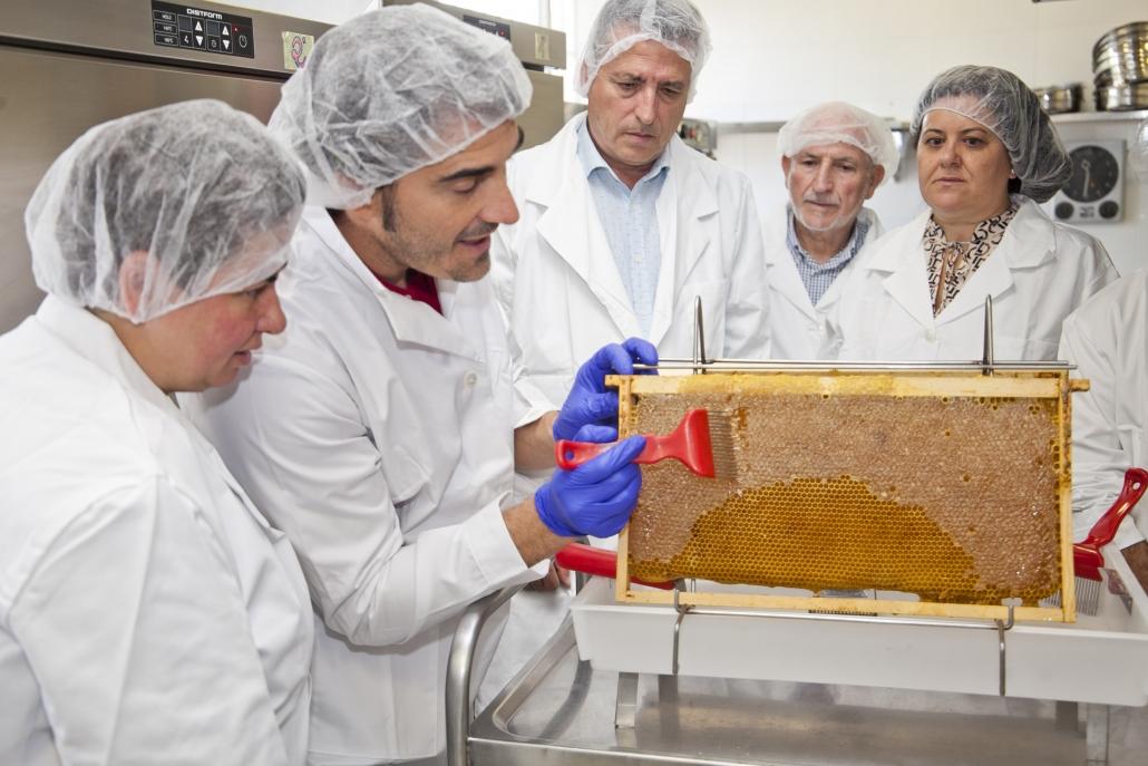 Proceso de extracción de miel. Foto: Ayuntamiento de Leganés.